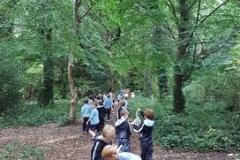 Rathfarnham-Park-Nature-Walk