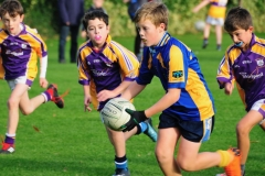 St Marys Junior B Football vs Scoil Lorcan - 23 of 25