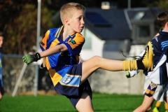 St Marys Junior B Football vs Scoil Tressa - 17 of 21