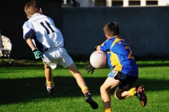 rsz_tst_marys_junior_b_football_vs_scoil_tr_-_9_of_21